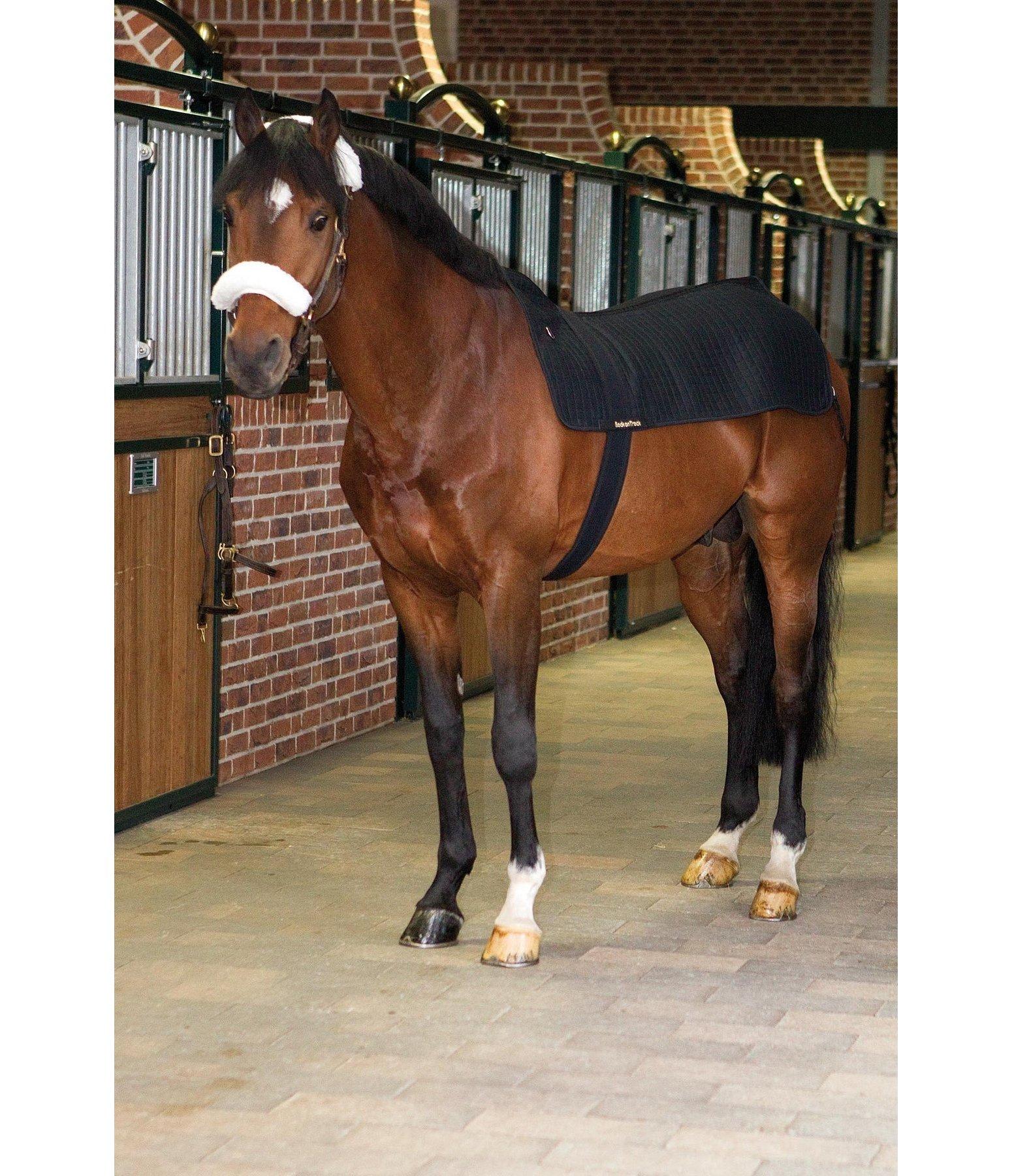 prot ge dos chauffant royal pour le cheval kramer equitation. Black Bedroom Furniture Sets. Home Design Ideas