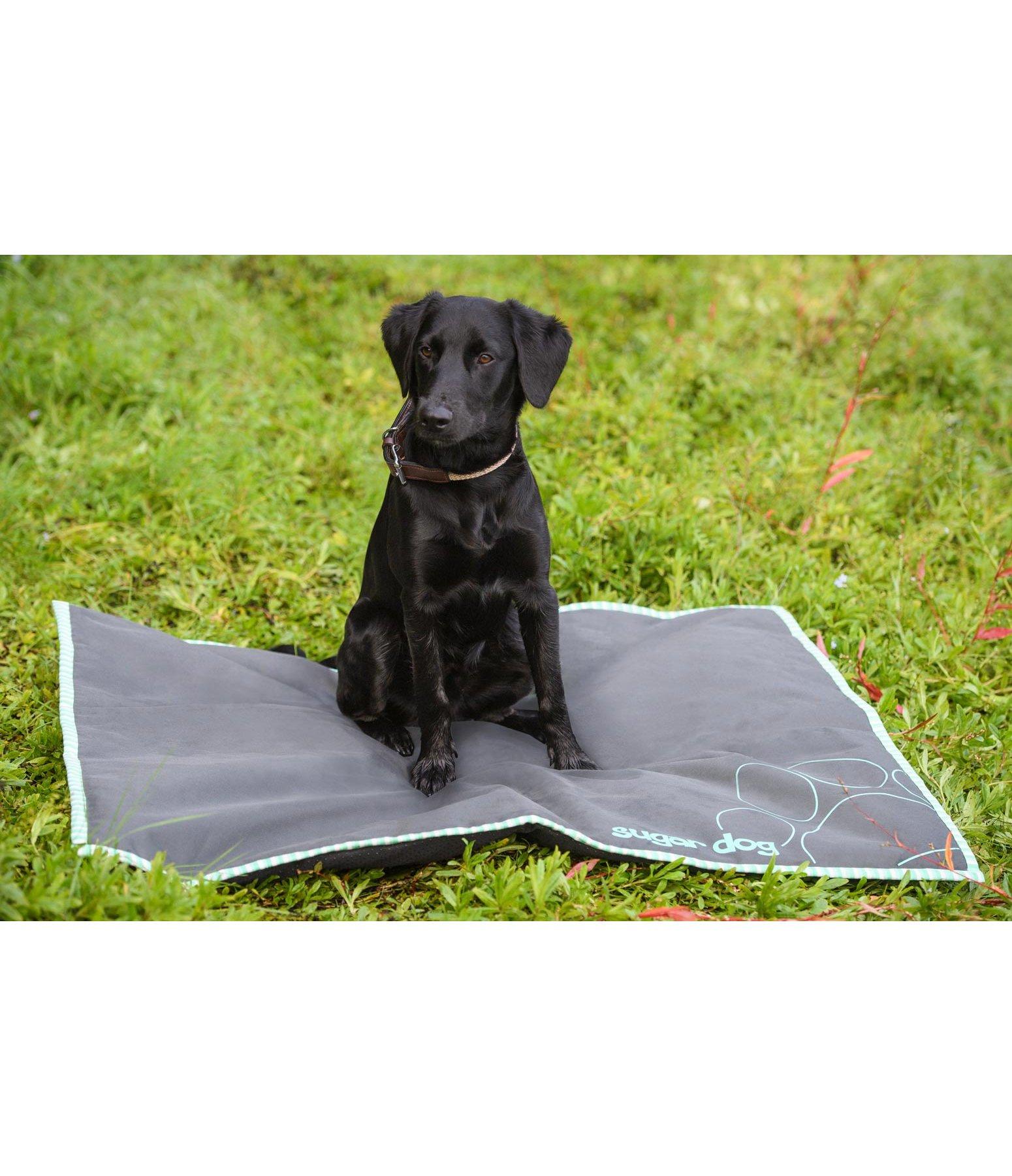 tapis de sol pour chiens carlos lits coussins kramer equitation. Black Bedroom Furniture Sets. Home Design Ideas