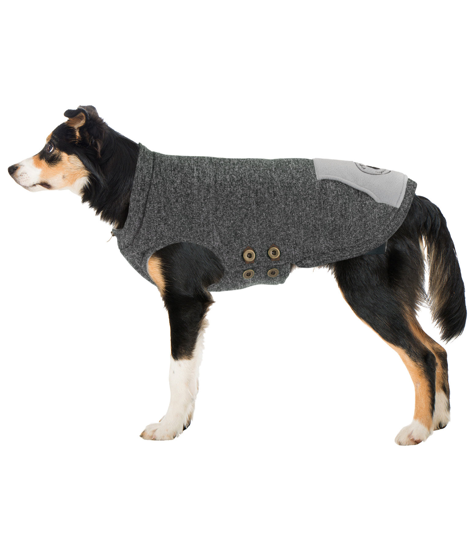 Pull-over pour chiens  Seb