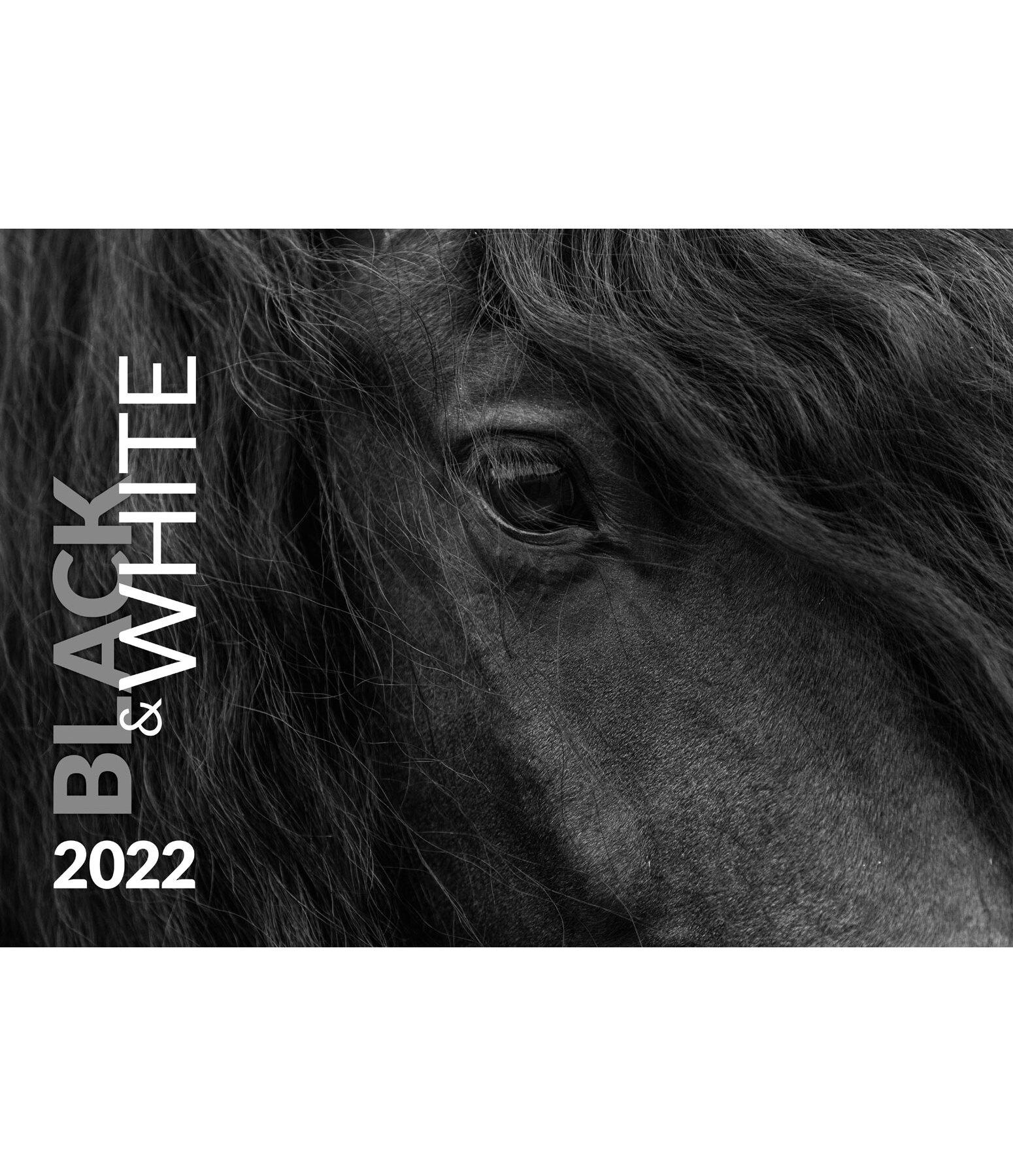 Calendrier noir & blanc artistique 2021   Kramer Equitation