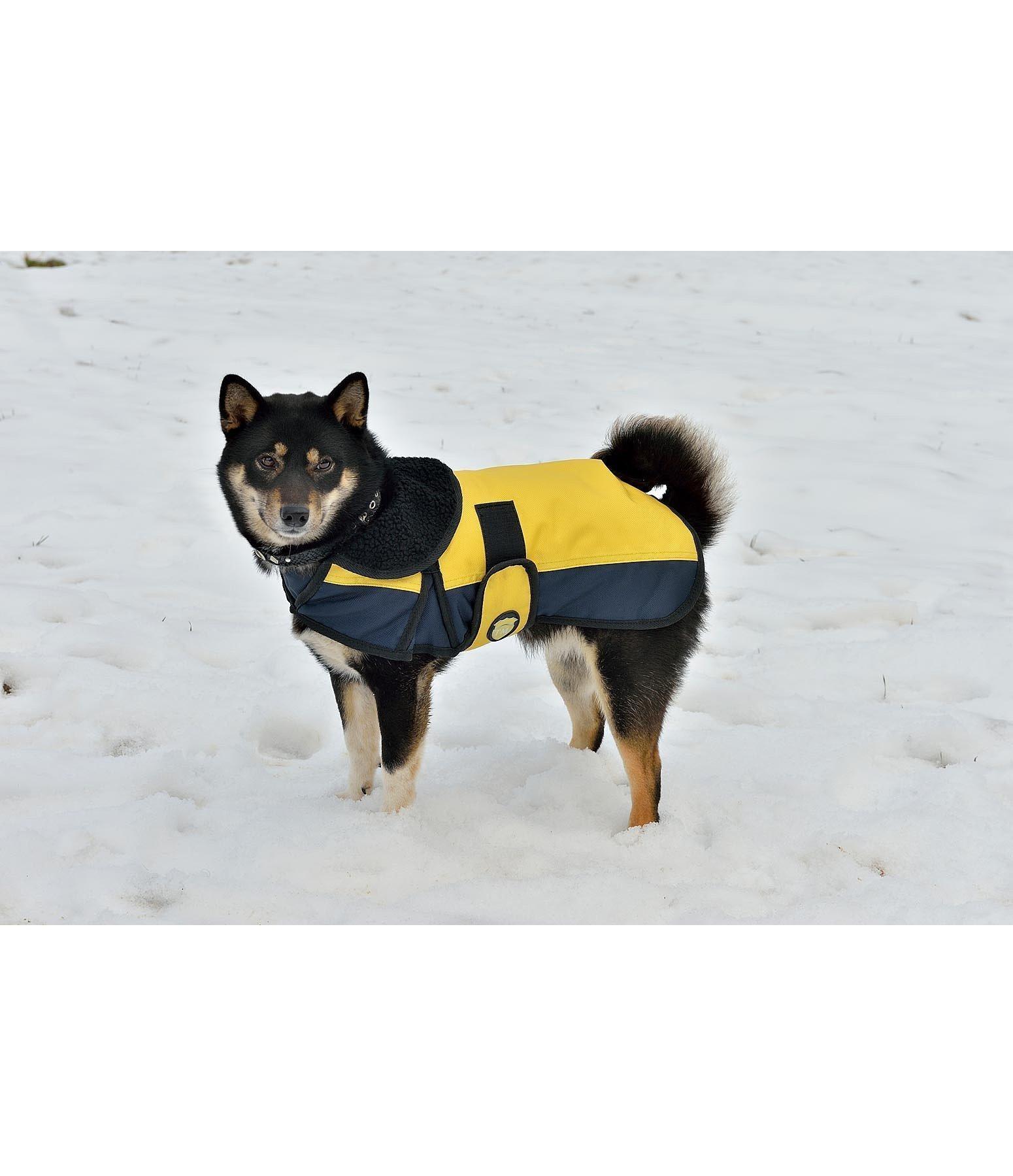 Couverture pour chiens bicolore vestes et manteaux pour - Couverture pour petit chien ...