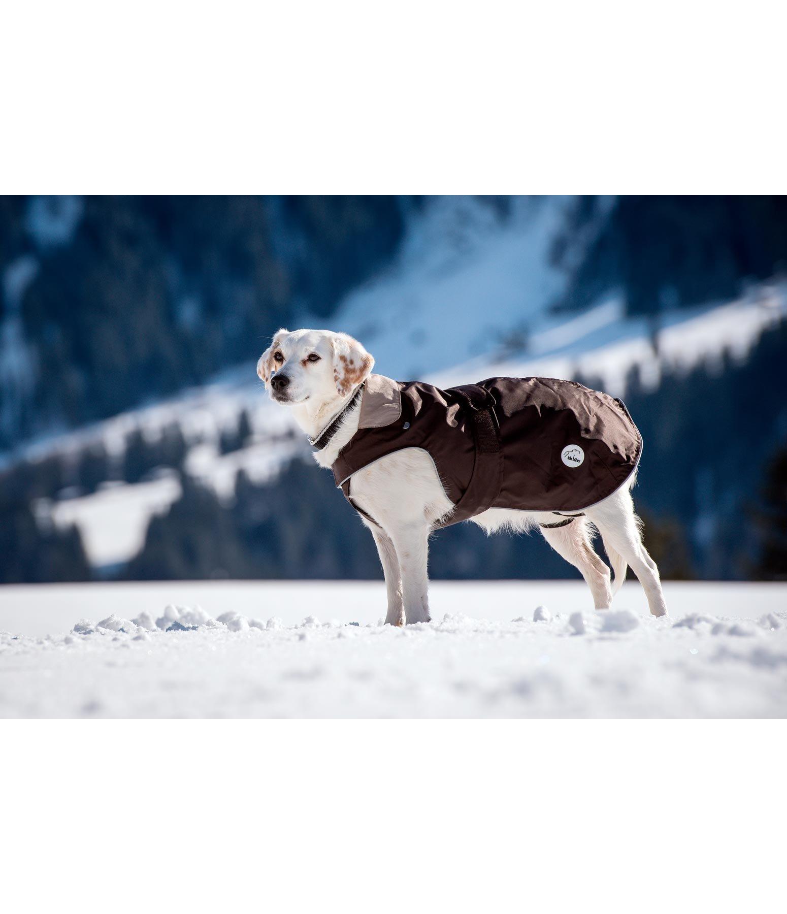 Couverture pour chiens 2 en 1 vestes et manteaux pour - Couverture pour petit chien ...