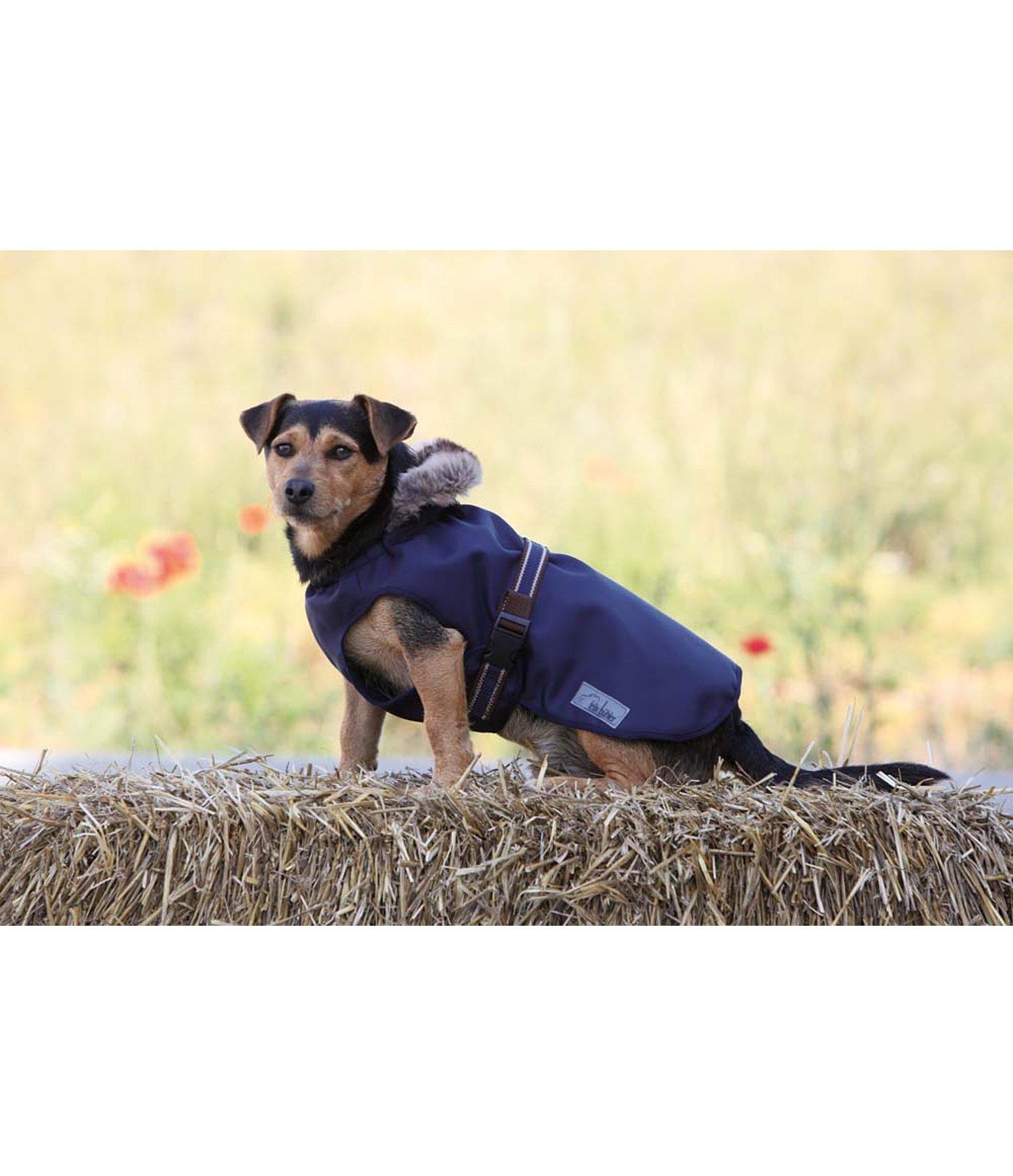 Couverture fonctionnelle pour chien brave deluxe vestes - Couverture pour petit chien ...