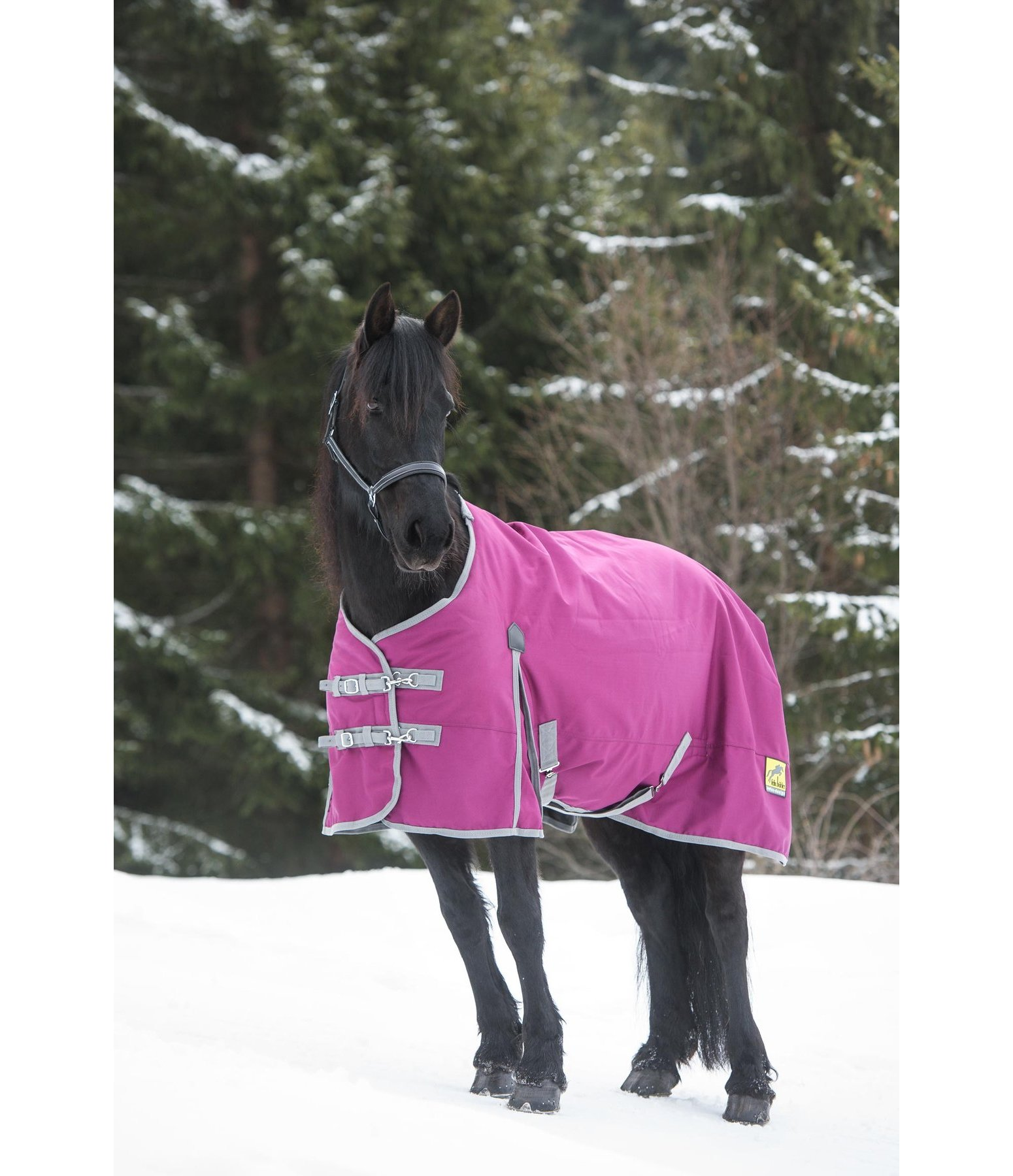 couverture d ext 233 rieur technique destiny 200g couvertures d hiver kramer equitation