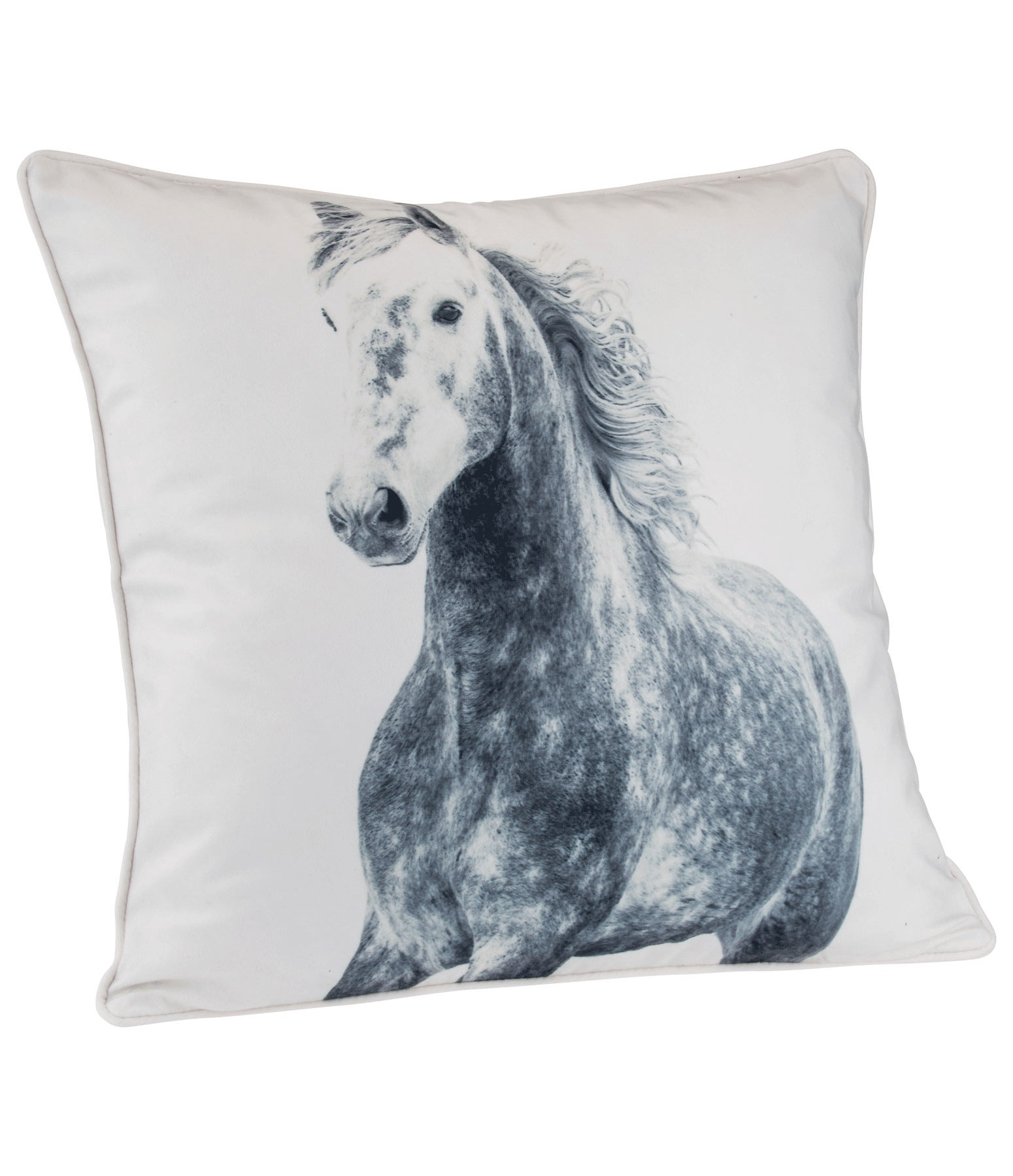 Coussin  Apple Grey