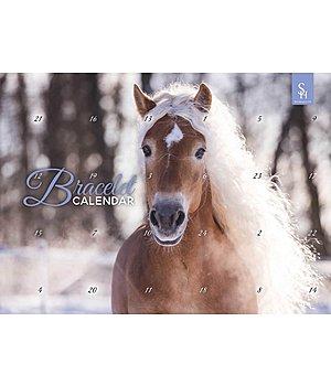 Calendrier De Lavent Schleich Chevaux 2019.Calendrier De L Avent Horse Club 2019 Kramer Equitation