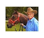 Monty Roberts Licol Dually - 440137-P-R - 2